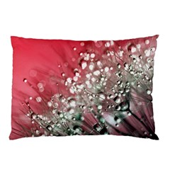 Dandelion 2015 0710 Pillow Cases (Two Sides)