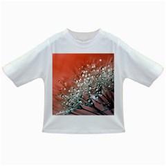 Dandelion 2015 0711 Infant/Toddler T-Shirts
