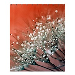 Dandelion 2015 0711 Shower Curtain 60  x 72  (Medium)