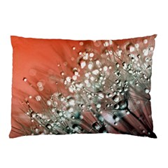 Dandelion 2015 0711 Pillow Cases (Two Sides)