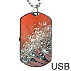 Dandelion 2015 0711 Dog Tag USB Flash (Two Sides)