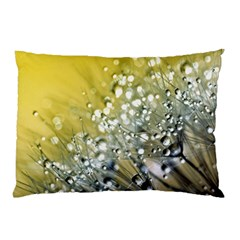 Dandelion 2015 0713 Pillow Cases (two Sides)