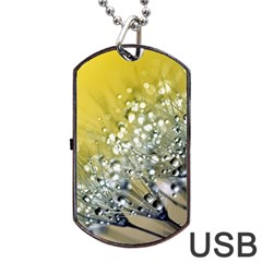 Dandelion 2015 0713 Dog Tag USB Flash (Two Sides)