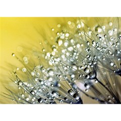 Dandelion 2015 0713 Birthday Cake 3d Greeting Card (7x5)