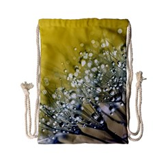 Dandelion 2015 0713 Drawstring Bag (Small)