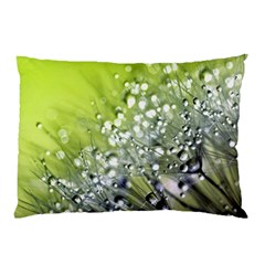 Dandelion 2015 0714 Pillow Cases (Two Sides)