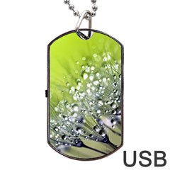 Dandelion 2015 0714 Dog Tag USB Flash (One Side)