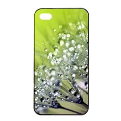 Dandelion 2015 0714 Apple Iphone 4/4s Seamless Case (black)