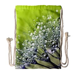 Dandelion 2015 0714 Drawstring Bag (Large)
