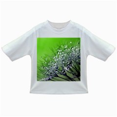Dandelion 2015 0715 Infant/toddler T Shirts