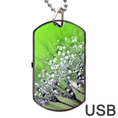 Dandelion 2015 0715 Dog Tag Usb Flash (one Side)