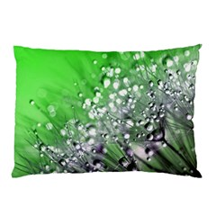Dandelion 2015 0716 Pillow Cases (two Sides)