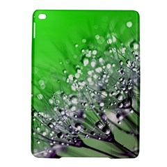 Dandelion 2015 0716 iPad Air 2 Hardshell Cases