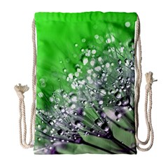 Dandelion 2015 0716 Drawstring Bag (large)