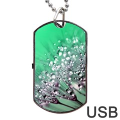 Dandelion 2015 0718 Dog Tag USB Flash (Two Sides)