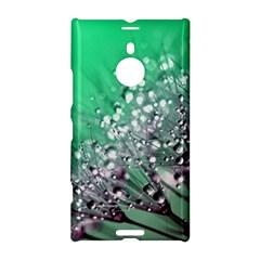 Dandelion 2015 0718 Nokia Lumia 1520