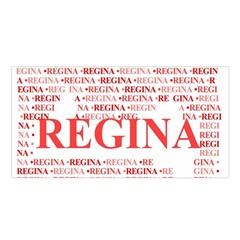 Regina Satin Shawl
