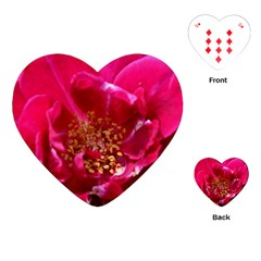 Red Rose Playing Cards (Heart)