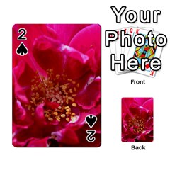 Red Rose Playing Cards 54 Designs