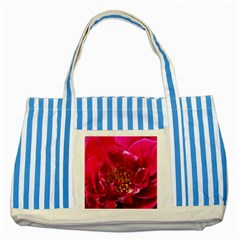 Red Rose Striped Blue Tote Bag