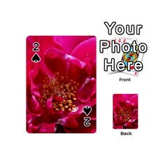 Red Rose Playing Cards 54 (mini)