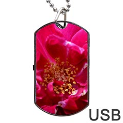 Red Rose Dog Tag USB Flash (One Side)