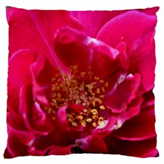 Red Rose Large Flano Cushion Cases (two Sides)