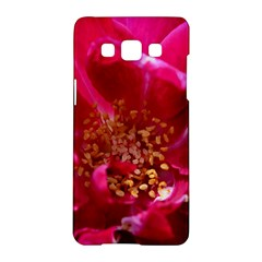 Red Rose Samsung Galaxy A5 Hardshell Case