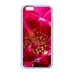 Red Rose Apple Seamless iPhone 6 Case (Color)