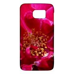 Red Rose Galaxy S6