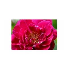 Red Rose Satin Wrap
