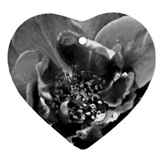 Black And White Rose Ornament (heart)