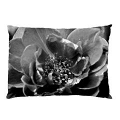 Black And White Rose Pillow Cases (two Sides)
