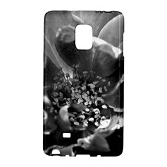 Black And White Rose Galaxy Note Edge