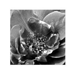 Black and White Rose Small Satin Scarf (Square)