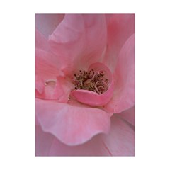 Pink Rose Shower Curtain 48  x 72  (Small)