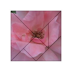 Pink Rose Acrylic Tangram Puzzle (4  x 4 )