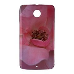 Pink Rose Nexus 6 Case (White)
