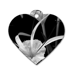 Exotic Black And White Flowers Dog Tag Heart (one Side)