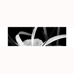 Exotic Black and White Flowers Large Bar Mats