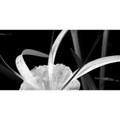Exotic Black And White Flowers You Are Invited 3d Greeting Card (8x4)