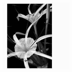 Exotic Black And White Flowers Small Garden Flag (two Sides)