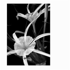 Exotic Black And White Flowers Large Garden Flag (two Sides)