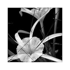 Exotic Black and White Flowers Acrylic Tangram Puzzle (6  x 6 )