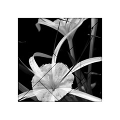 Exotic Black And White Flowers Acrylic Tangram Puzzle (4  X 4 )