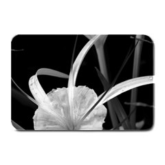 Exotic Black and White Flowers Plate Mats