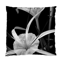 Exotic Black And White Flowers Standard Cushion Cases (two Sides)