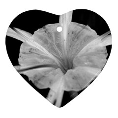 Exotic Black And White Flower 2 Ornament (heart)