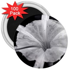 Exotic Black And White Flower 2 3  Magnets (100 Pack)