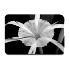 Exotic Black and White Flower 2 Plate Mats